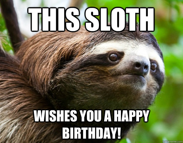This sloth wishes you a happy birthday! - This sloth wishes you a happy birthday!  happy birthday sloth
