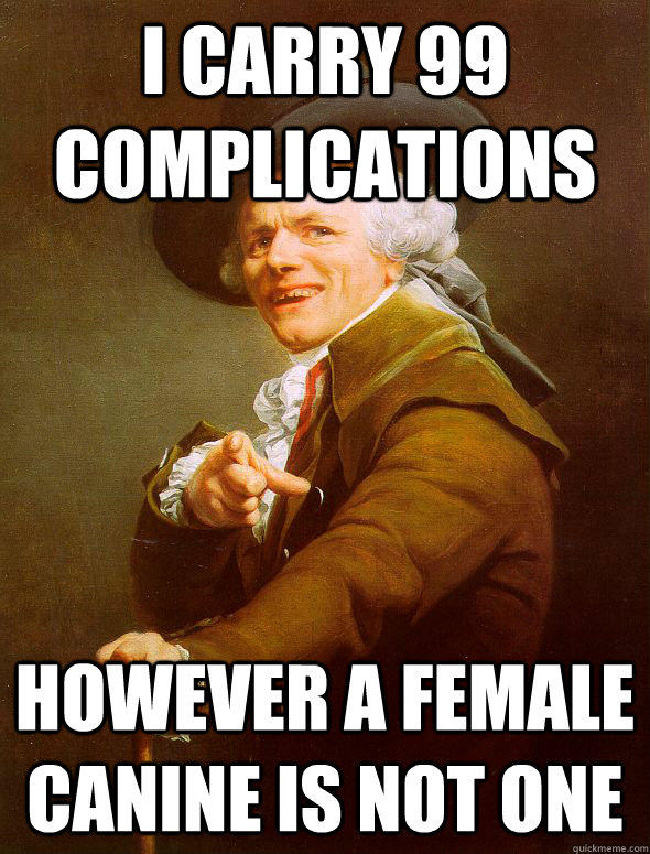 I carry 99 complications however a female canine is not one
