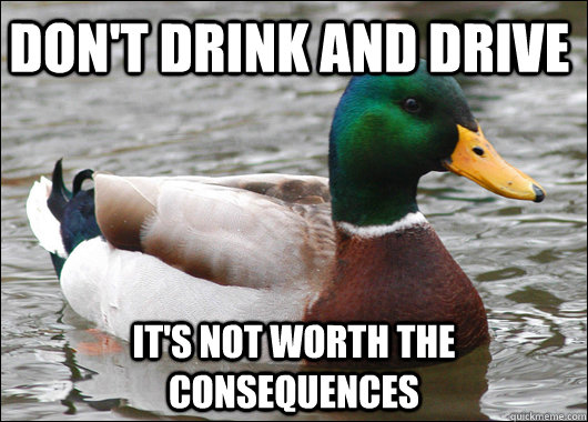 don't drink and drive it's not worth the consequences - don't drink and drive it's not worth the consequences  Actual Advice Mallard