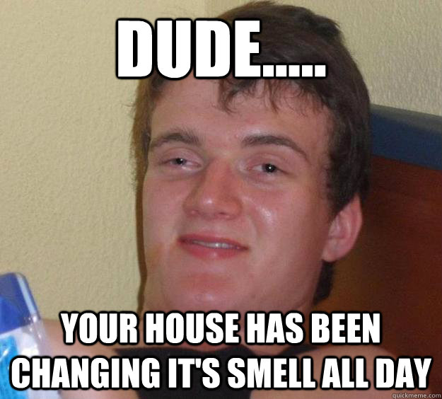 Dude Your House Has Been Changing It 39 S Smell All Day
