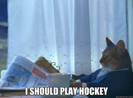 I SHOULD play hockey