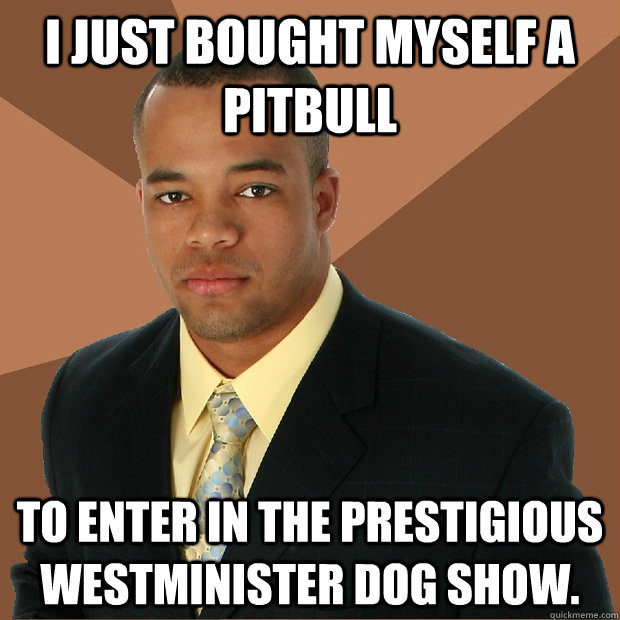 I just bought myself a pitbull to enter in the prestigious Westminister dog show. - I just bought myself a pitbull to enter in the prestigious Westminister dog show.  Successful Black Man
