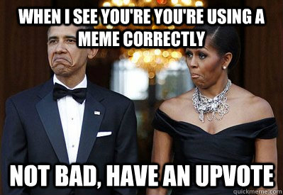 when I see you're you're using a meme correctly NOT BAD, Have an upvote