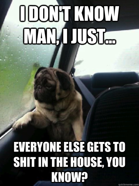 I don't know man, I just... Everyone else gets to shit in the house, you know? - I don't know man, I just... Everyone else gets to shit in the house, you know?  Introspective Pug