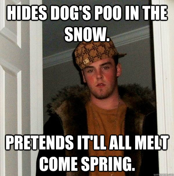 Hides dog's poo in the snow. Pretends it'll all melt come spring.  - Hides dog's poo in the snow. Pretends it'll all melt come spring.   Scumbag Steve