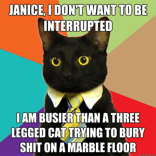 f8ec3f3cef8c6bec58e48b48f7ee9d02ec0a9f726fdc6d4f95cc01a91394269b janice, i don't want to be interrupted i am busier than a three,Busier Than A Meme