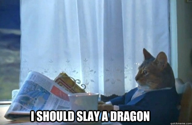 I SHOULD SLAY A DRAGON