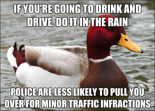 If you're going to drink and drive, do it in the rain police are less likely to pull you over for minor traffic infractions - If you're going to drink and drive, do it in the rain police are less likely to pull you over for minor traffic infractions  Malicious Advice Mallard