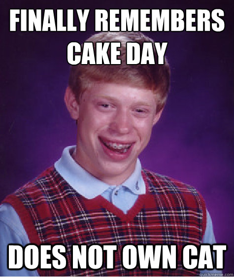 finally remembers cake day does not own cat - finally remembers cake day does not own cat  Bad Luck Brian