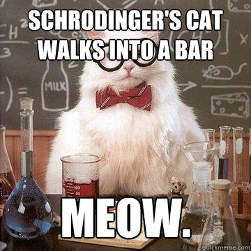 Schrodinger's cat walks into a bar meow.  - Schrodinger's cat walks into a bar meow.   lame pun chemistry cat.
