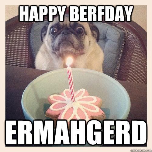 f9320dd1799329d2de81dced8b8dc58a535de77a32b3ab3d153889d2301800c7 happy berfday ermahgerd birthday pug quickmeme,Ermahgerd Birthday Meme