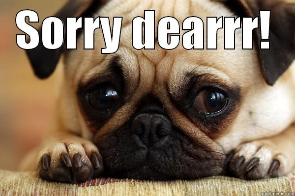 Sorry Dog Meme