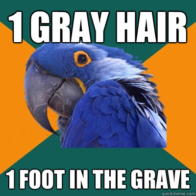 1 gray hair 1 foot in the grave - 1 gray hair 1 foot in the grave  Paranoid Parrot