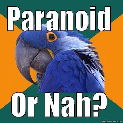 PARANOID OR NAH? Paranoid Parrot