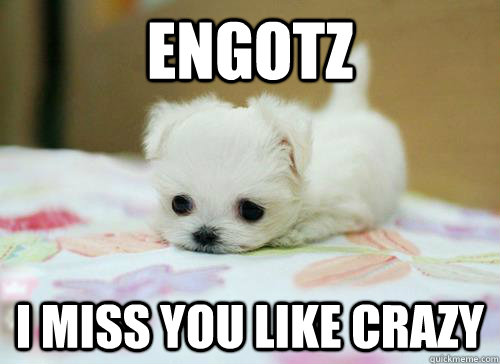 Engotz i Miss you like crazy