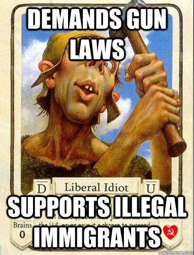 demands gun laws supports illegal immigrants