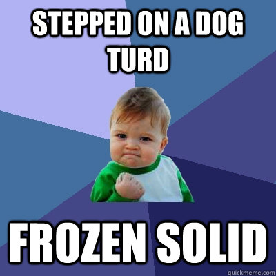 Stepped on a dog turd FROZEN SOLID - Stepped on a dog turd FROZEN SOLID  Success Kid