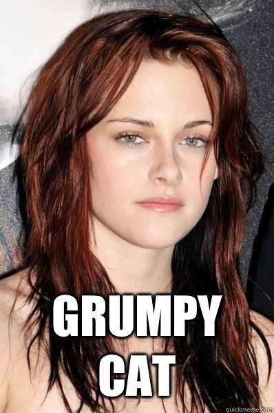 Grumpy cat  Kristen Stewart