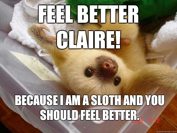 Feel better Claire! Because I am a sloth and you should feel better. - Feel better Claire! Because I am a sloth and you should feel better.  feel better sloth