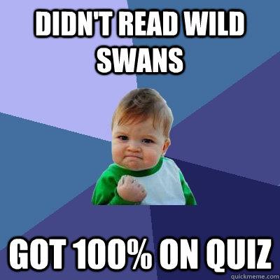 Didn't read wild swans got 100% on quiz - Didn't read wild swans got 100% on quiz  Success Kid