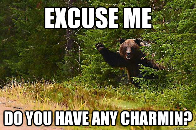 f9a6cf1bed5ed8b71a845e2324eef44f04529ee0b3b00394b80ae7e862b540f0 excuse me do you have any charmin? greetings bear quickmeme
