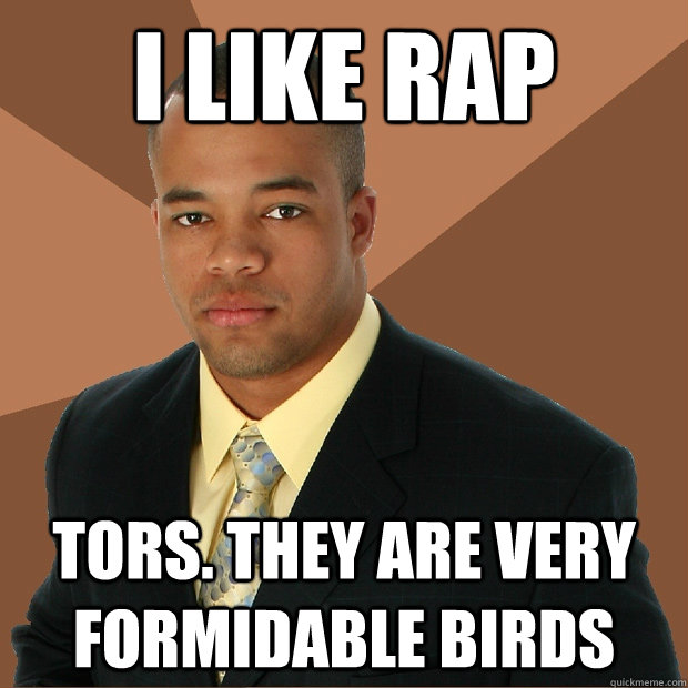 i like rap tors. they are very formidable birds - i like rap tors. they are very formidable birds  Successful Black Man