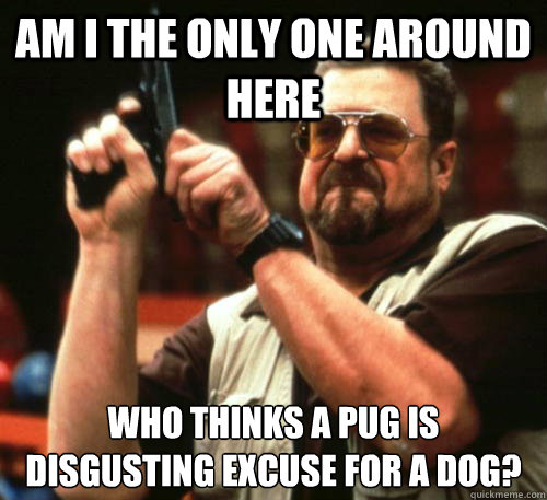 Am i the only one around here Who thinks a pug is disgusting excuse for a dog? - Am i the only one around here Who thinks a pug is disgusting excuse for a dog?  Am I The Only One Around Here