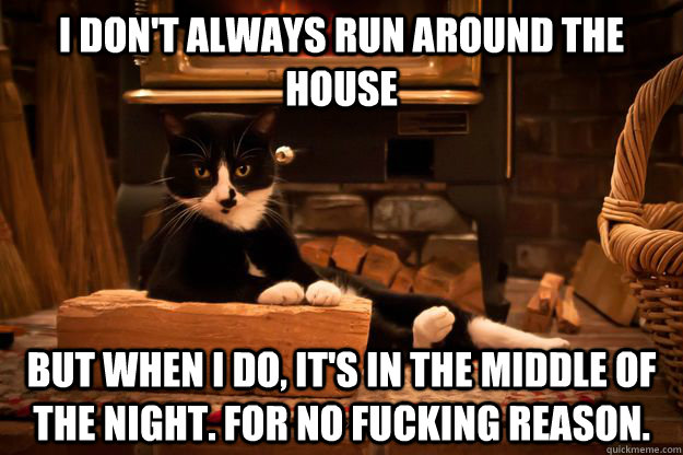 I don't always run around the house But when I do, it's in the middle of the night. For no fucking reason.  - I don't always run around the house But when I do, it's in the middle of the night. For no fucking reason.   Misc