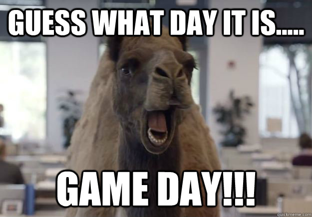 GUESS WHAT DAY IT IS..... GAME DAY!!! - GUESS WHAT DAY IT IS..... GAME DAY!!!  Geico Camel Hump Day