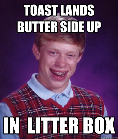 toast lands butter side up in  litter box - toast lands butter side up in  litter box  Bad Luck Brian