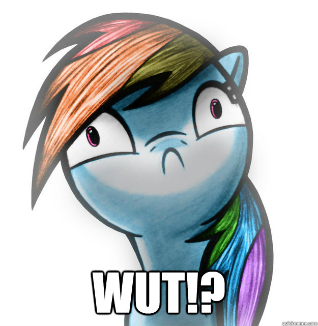 WUT!? -  WUT!?  Rainbow Derp