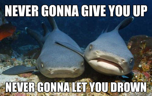 never gonna give you up never gonna let you drown  Compassionate Shark Friend