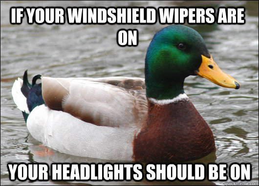 if your windshield wipers are on your headlights should be on - if your windshield wipers are on your headlights should be on  Actual Advice Mallard