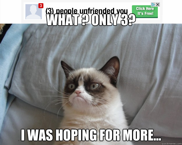 What ? only 3? i was hoping for more... - What ? only 3? i was hoping for more...  Grumpy Cat on Being Unfriended