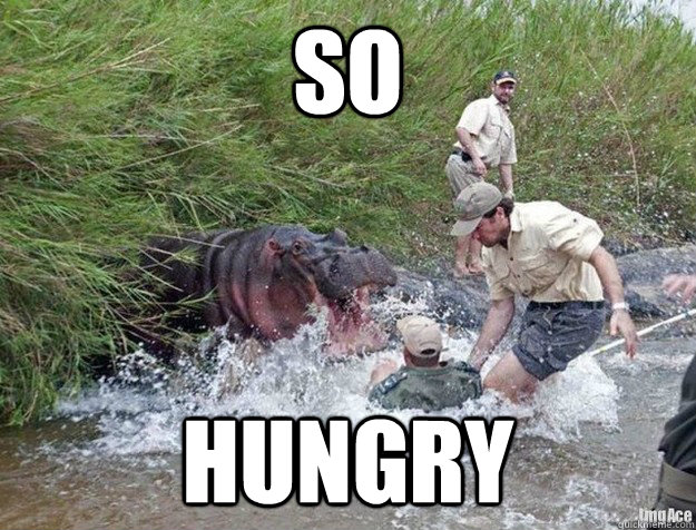 SO Hungry  Hungry Hippo