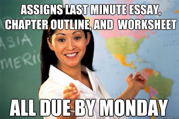 Last Minute Essay Writer