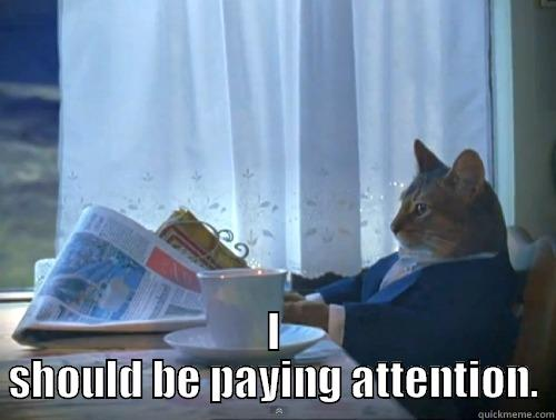 How I feel making a meme in class -  I SHOULD BE PAYING ATTENTION. The One Percent Cat