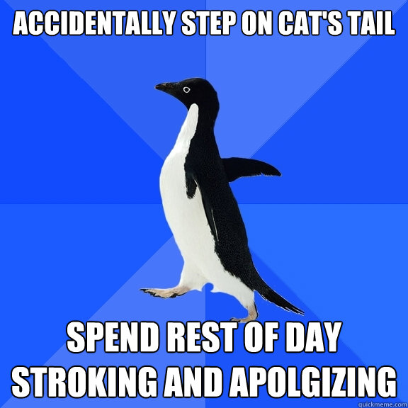 accidentally step on cat's tail spend rest of day stroking and apolgizing - accidentally step on cat's tail spend rest of day stroking and apolgizing  Socially Awkward Penguin