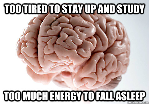 too tired to stay up and study too much energy to fall asleep - too tired to stay up and study too much energy to fall asleep  Scumbag Brain