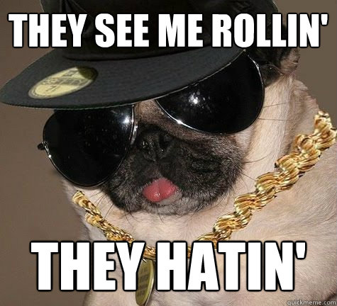 They see me Rollin' They hatin' - They see me Rollin' They hatin'  Gangster Pug