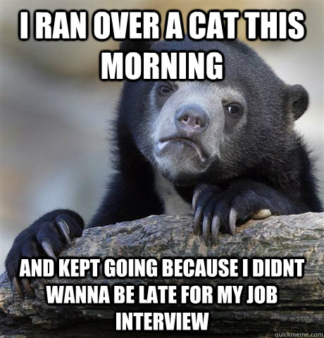 i ran over a cat this morning and kept going because i didnt wanna be late for my job interview - i ran over a cat this morning and kept going because i didnt wanna be late for my job interview  confessionbear
