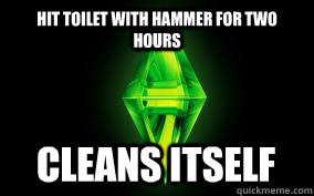 Hit toilet with hammer for two hours Cleans itself
