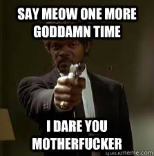 fa661eb3f72908ca75cb9e1ab5241447f7c72e620bac7c83509caccacf396203 say meow one more goddamn time i dare you motherfucker pulp,Meow Meme