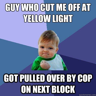 Guy who cut me off at yellow light Got pulled over by cop on next block - Guy who cut me off at yellow light Got pulled over by cop on next block  Success Kid