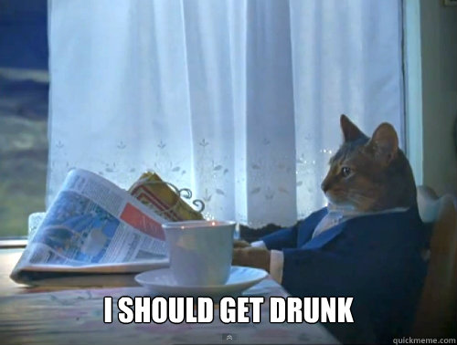 I should get drunk -  I should get drunk  The One Percent Cat