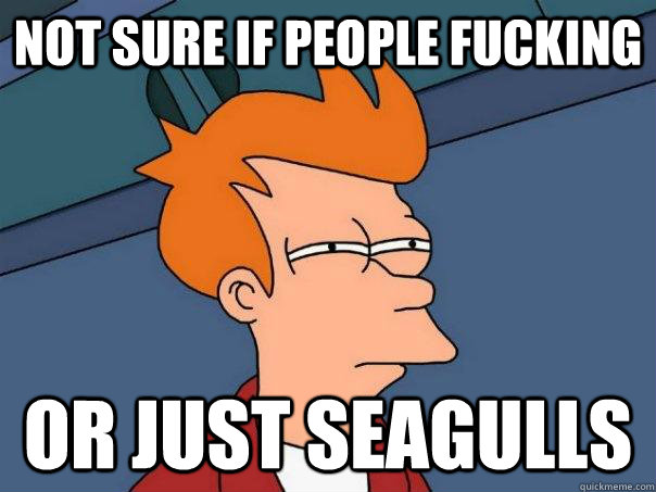 Not sure if people fucking or just seagulls - Not sure if people fucking or just seagulls  Futurama Fry