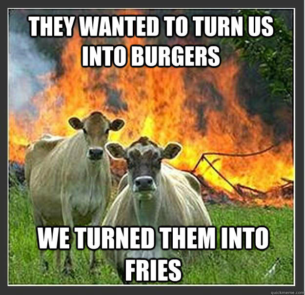 They wanted to turn us into burgers we turned them into fries  Evil cows