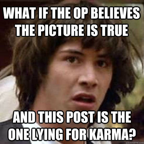 what if the OP believes the picture is true And this post is the one lying for karma? - what if the OP believes the picture is true And this post is the one lying for karma?  conspiracy keanu