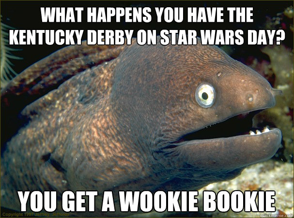 What happens you have the Kentucky Derby on Star Wars Day? You get a Wookie Bookie  Bad Joke Eel