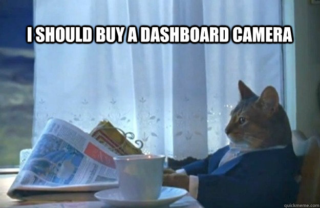 I should buy a dashboard camera - I should buy a dashboard camera  Sophisticated Cat